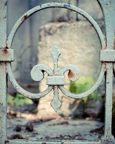 """Paris Fleur-de-lis  ~  """"In life one has a choice to take one of two paths: to wait for some special day - or to celebrate each special day."""" ― Rasheed Ogunlaru"""