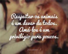 frases para status, animais, respeitar