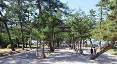 Izumo Taisha (Izumo Grand Shrine)