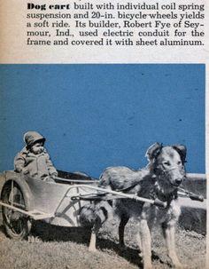 Retro dog cart sheet aluminum  airstream