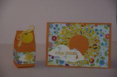 Geburtstagkarte mit Papier und Stempel von Stampin up, Stanzen von Memory Box