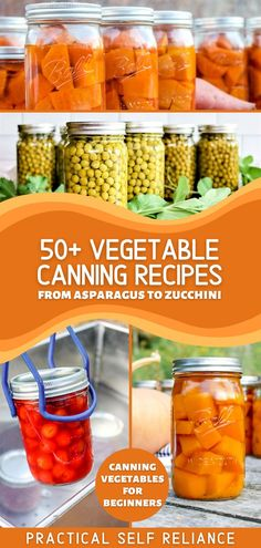 50+ Vegetable Canning Recipes: Canning Vegetables for Beginners - If you're looking for pressure canning recipes or water bath canning recipes, you'll love all of my favorite veggie canning recipes from water bath canning asparagus to water bath canning zucchini. Plus learn all about pressure canning vegetables! pressure canning for beginners   water bath canning for beginners   canning veggies from garden   pickling and canning   vegetable canning ideas   creative canning recipes Canning Tomatoes Water Bath, Canning Asparagus, Canning Zucchini, Canning Vegetables, Veggies, Pickled Garlic, Pickled Carrots, Pickled Beets, Canning Peas