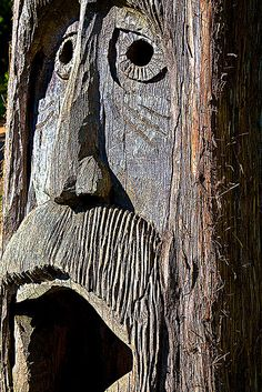 Tingle Tree Carving at Orr Park