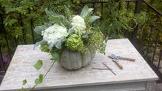 lovely arrangement in heirloom pumpkin Friday Link Love - Cottage and Vine