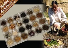 Can I make this? Northeastern Native American Foods Samples Educational Kit