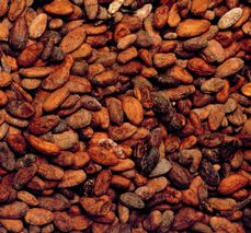 Cocoa beans from different sources are mixed according to the recipes.