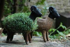 Grow Your Own Llama Cress Figure – SooFunky – Funky Gifts & Present Ideas Soft Sculpture, Garden Sculpture, Grow Your Own Mushrooms, Pet Sheep, Mini Pond, Funky Gifts, Chia Pet, Llama Gifts, Moss Garden