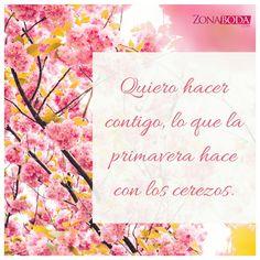 Contigo lo quiero todo!  #frasesdeamor #frasesbonitas #primavera #enamorados #novios