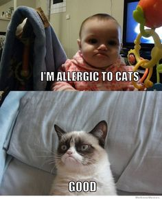 Human allergy Grumpy...