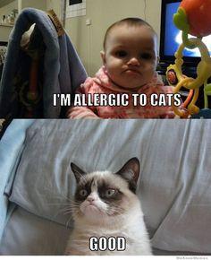 Human allergy Grumpy...