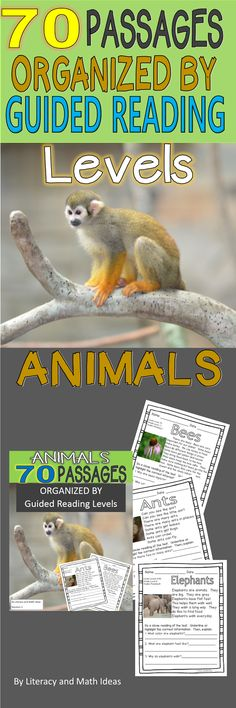 70 Animals Passages Organized By Guided Reading Levels are included in this document. The passages align to the guided reading, Flesch Kincaid, and Lexile leveling systems. This resource is great for reading instruction as well as Response to Intervention (RTI). $