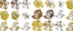 arboles photoshop en planta - Buscar con Google
