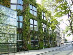 Musée du quai Branly, em Paris. #arquitetura #contemporanea #jardinsverticais #museu #franca