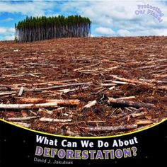 What Can We Do About Deforestation? (Protecting Our Planet) - http://www.yourglt.com/what-can-we-do-about-deforestation-protecting-our-planet/?utm_source=PN&utm_medium=http%3A%2F%2Fwww.pinterest.com%2Fpin%2F368450813235896433&utm_campaign=SNAP%2Bfrom%2BGreening+Your+Home