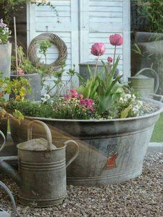 zinc tubs beautify every garden. - Planted zinc tubs beautify every garden. -Planted zinc tubs beautify every garden. - Planted zinc tubs beautify every garden.