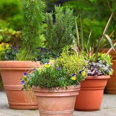 I <3 a good container garden