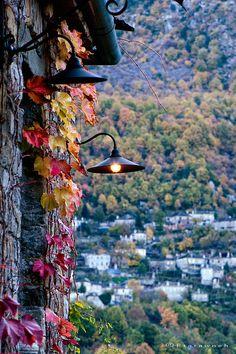 Ivy Lantern, Epirus, Greece