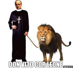 Don Vito | BESTI.it - immagini divertenti, foto, barzellette, video Funny Images, Funny Pictures, Quote Citation, Bellisima, Hilarious, Lol, Comics, Meme, Animals