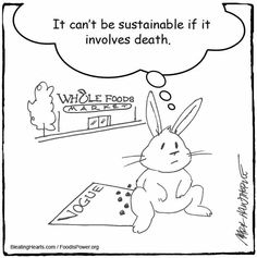 Truth Bunny Rabbit, Rabbits, Whole Food Recipes, Bunnies, Snoopy, Foods, Meat, Fictional Characters, Food Food