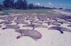 照間ビ-チでの浜干し 沖縄でタタミの事なら兼城畳産業!安心・安全・畳の志高い専任のプロがご相談承ります!