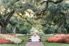 South Carolina Wedding Photography at Brookgreen Gardens | Unique garden wedding editorial. Pawleys Island, SC. Pasha Belman Photography | www.pashabelman.com - gorgeous wedding table in the middle of the gardens. Gorgeous wedding venue