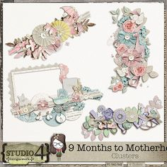 9 Months to Motherhood - Clusters