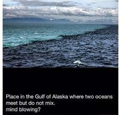 Place in the gulf of Alaska where two oceans meet, but do not mix
