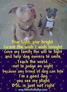 We have to put an end to BSL. Pitt Bulls are not the enemy's it's the beasts on the other end of the leash who's to blame.