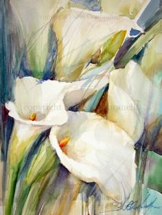 calla lilies Copos de Leite, painting by artist Fabio Cembranelli Watercolor Flowers, Watercolor Paintings, Original Paintings, Watercolours, Arte Floral, Art Tutorials, Painting Inspiration, Art Pictures, Painting & Drawing