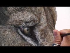 Making of Gracious | a painting by Marcel Witte - YouTube