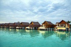 Niyama Maldives | HomeDSGN