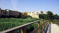Vistas del casco antiguo desde la Pasarela 14 del Parque Natural del Túria.
