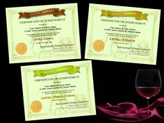 Some of the certificates for the Gaited Dressage program