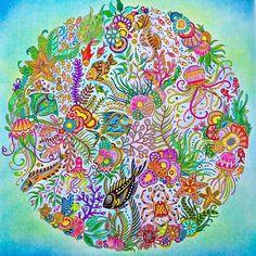 Primeiro desenho do Oceano Perdido !!! #oceanoperdidotop #oceanoperdido #johannabasford #jardimsecreto #jardimsecretotop #florestaencantada #creativetherapy #animallovers #animalkingdom #livrosdecolorir #lostocean #oceanlost