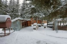 Alaska Homestead, Homesteading, Outdoor, Outdoors, Outdoor Games