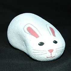 Bunny. Rabbit. Pet rock.