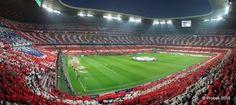 Bjorn Koch is a European soccer enthusiast. His favorite team is Bayern Munich. Bjorn Koch is originally from Germany but now resides in the Boston, MA area. Fc Bayern Munich, Champions League, Baseball Field, England, Traveling, Fans, Twitter, Google, Borussia Dortmund