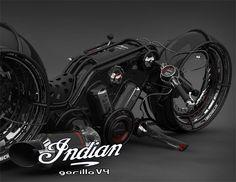 Indian Gorilla V4