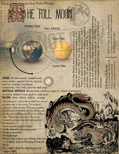 The Full Moon, Book of Shadows page - The is such a beautiful sight in our skies; Magick Spells, Witchcraft, Full Moon Ritual, Eclectic Witch, Tarot Learning, Moon Magic, Practical Magic, Book Of Shadows, Herbalism