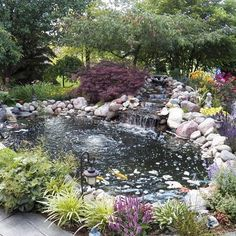 Achieve beautiful blue healthy water with Organic Pond dyes and products! Patio Pond, Pond Landscaping, Ponds Backyard, Koi Ponds, Backyard Waterfalls, Garden Ponds, Tropical Landscaping, Fish Pond Gardens, Water Gardens