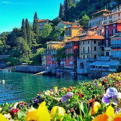 #landscaper #picoftheday  #focus #Beautiful #traveling #visiting #instatravel #venus #beautifulhouse #perfecto #amazing  #italy #flower #water #nature #museum #instahouse #niceshot #follow4follow #like4like