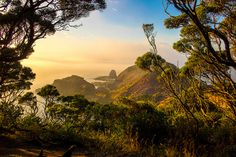 cape schanck looking towards Pulpit Rock   by Feather Finish Photography