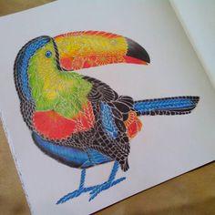 """#tropicalwonderland #milliemarotta #coloring #coloringbook"""