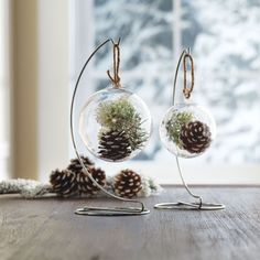 DIY Nature Inspired Snap Ornaments