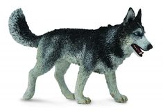 Siberian Husky - Collecta Figures: Animal Toys, Dinosaurs, Farm, Wild, Sea, Insect, Horses, Prehistoric, Woodlands, Dogs, Cats, Animal Replica