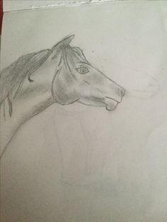 Horse Amazing Art, Diys, My Arts, Horses, Drawings, Animals, Design, Animales, Bricolage