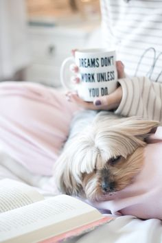 "Resenha do livro Dreamology.  Foto de Melina Souza. Mulher em cima da cama branca usando pijama listrado, segurando uma caneca com a frase ""dreams don't work unless you do"" e lendo o livro Dreamology (young adult - jovem adulto) com o cachorro deitado do colo.  Foto clean com predominância da cor branca e rosa."