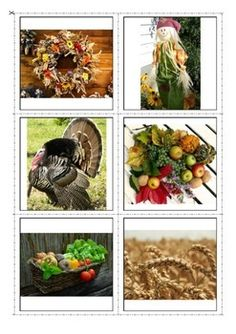 #Thanksgiving Vocabulary Photo Flash Cards- great for learning vocabulary on the topic through different matching picture to picture activities and memory games as well as for reading and spelling activities. For more resources follow https://www.pinterest.com/angelajuvic/autism-special-education-resources-angie-s-tpt-sto/