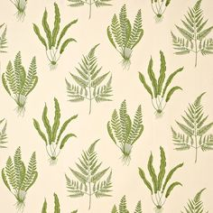 "oodland Ferns"" comes from detailed botanical studies in pen and ink, arranged in a repeat composition of three different species of fern aga... Possible half bath or similar."