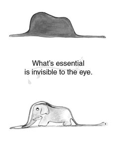 o essencial é invisível aos olhos ¨ what's essential is invisible to the eye ¨ one of my favorite quotes ¨ little prince